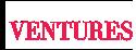 Holland Ventures LLC Logo
